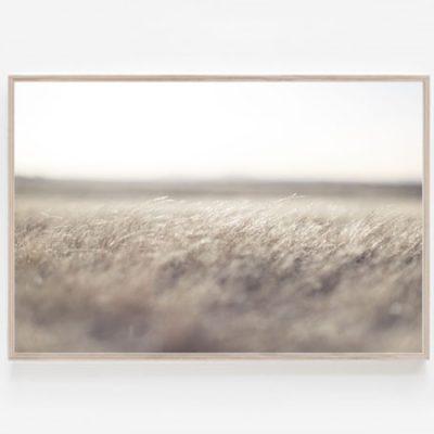 Fields print Clunes Aldona Kmiec Photography Australian Landscape Prints