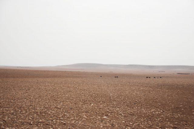 Moroccan Landscape print Marrakech