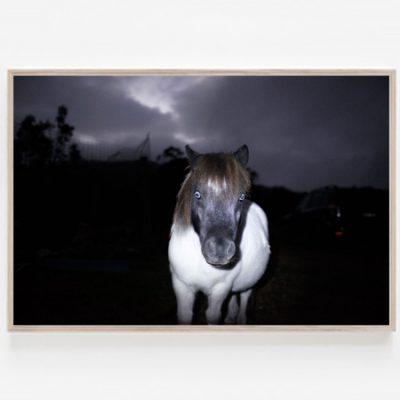Ghost Pony print