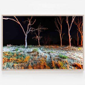 Wimmera Nights Print Y
