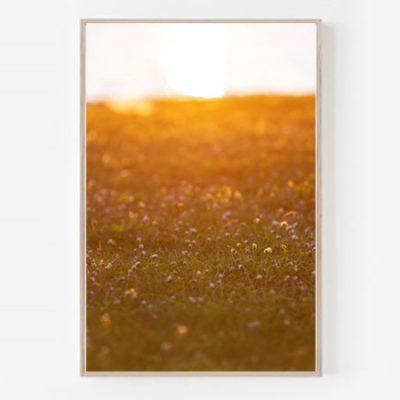 Daisies print wall art vertical frame