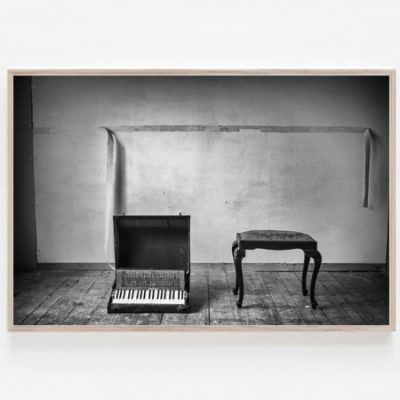 Untitled print piano accordion